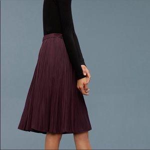 Aritzia Wilfred Borjes Skirt